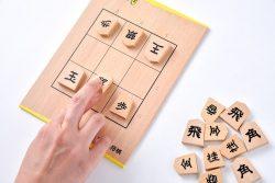 プロ棋士も絶賛「9マス将棋」と「どうぶつしょうぎ」が究極のミニマムゲームで面白い